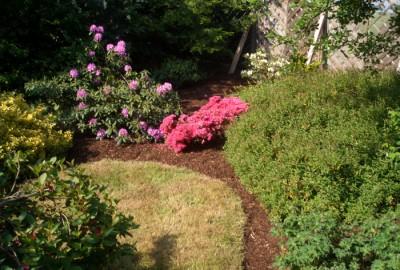 Pflanzen Pflege Mulchen Gartenbau Landschaftsbau Erftstadt Köln